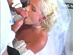 Bride, Swallow, Wedding, Wedding dress, Drtuber.com