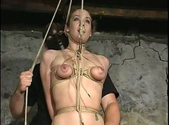 Tied, Tied for blowjob, Xhamster.com
