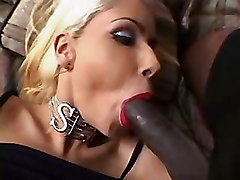 Shemale, Shemale cum in his mouth, Xhamster.com