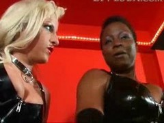 Bdsm, Black, Domination, Black dominates white couple, Xhamster.com